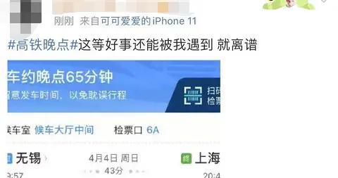 """""""18分钟车程晚点65分钟""""网友曝今多趟沪宁城际高铁晚点,12306回应"""