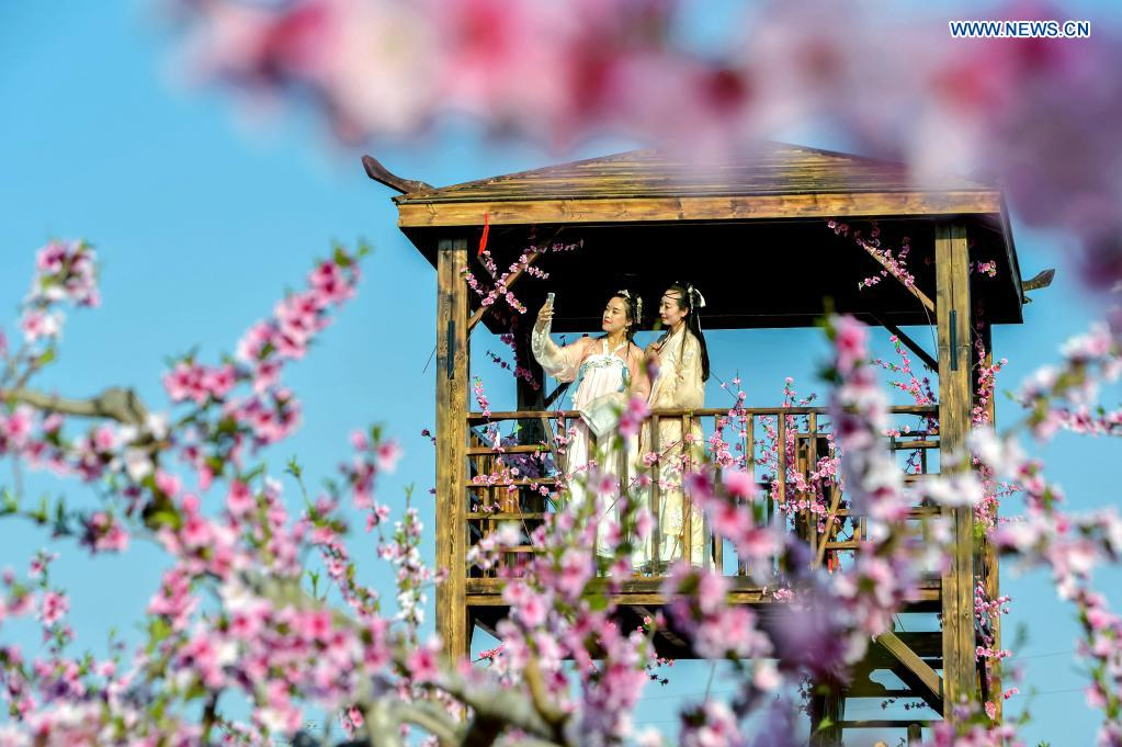 Tourists enjoy flowers at a peach garden demonstration area in Nanbu Township of Handan City, north China's Hebei Province, April 4, 2021. Peach blossoms are in full bloom in Nanbu Township, attracting many tourists. (Xinhua/Wang Xiao)