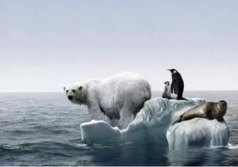 研究发现小冰期将会到来,冰河世纪会重现吗?