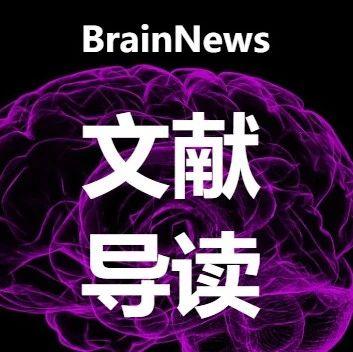Nat Neurosci:UCLA洪暐哲团队揭示社会行为奖赏性的神经机制