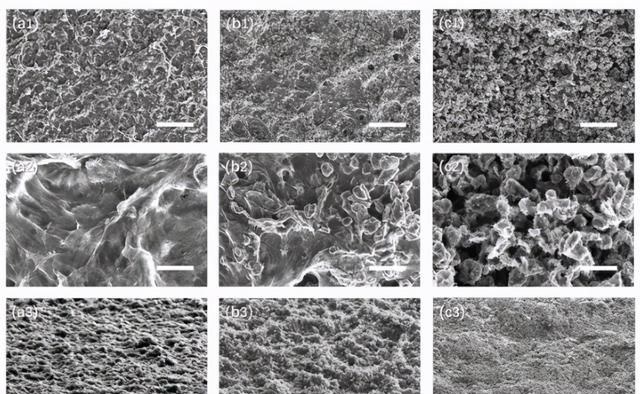 清华:碳纳米管和炭黑颗粒组成的新型黑色涂层,具有吸收性能