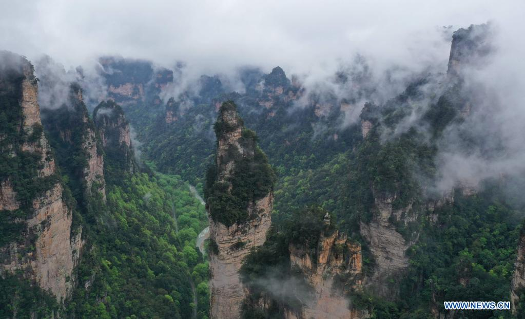 Aerial photo taken on April 7, 2021 shows the mountains shrouded by cloud and mist in Zhangjiajie National Forest Park, central China's Hunan Province. (Photo by Wu Yongbing/Xinhua)