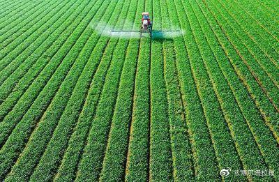 博州累计投放春耕备耕贷款32.79亿元
