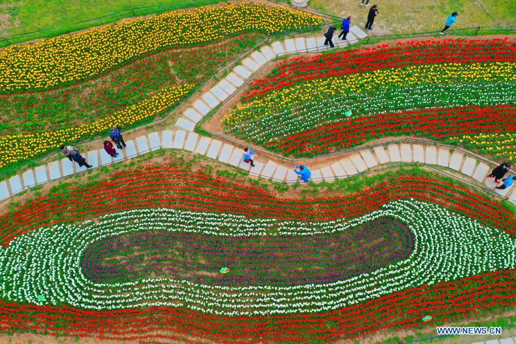 Aerial photo taken on April 7, 2021 shows tourists enjoying flowers in Xianyang Lake scenic area in Xianyang, northwest China's Shaanxi Province. (Photo by Li Junchao/Xinhua)