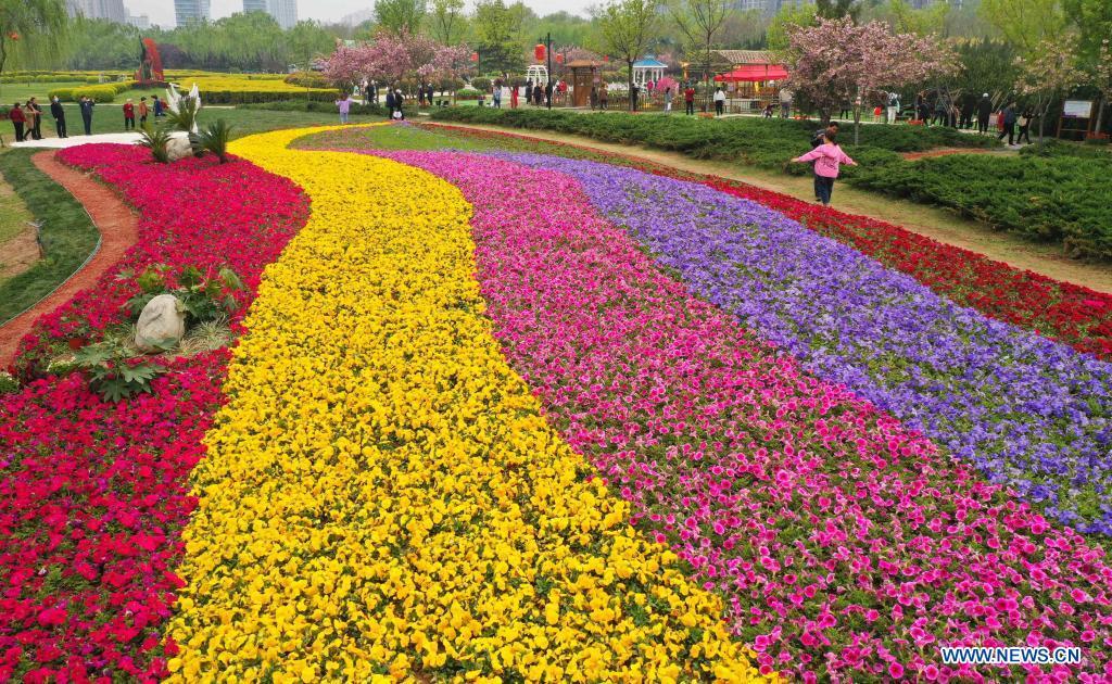 Tourists enjoy flowers in Xianyang Lake scenic area in Xianyang, northwest China's Shaanxi Province, April 7, 2021. (Photo by Li Junchao/Xinhua)