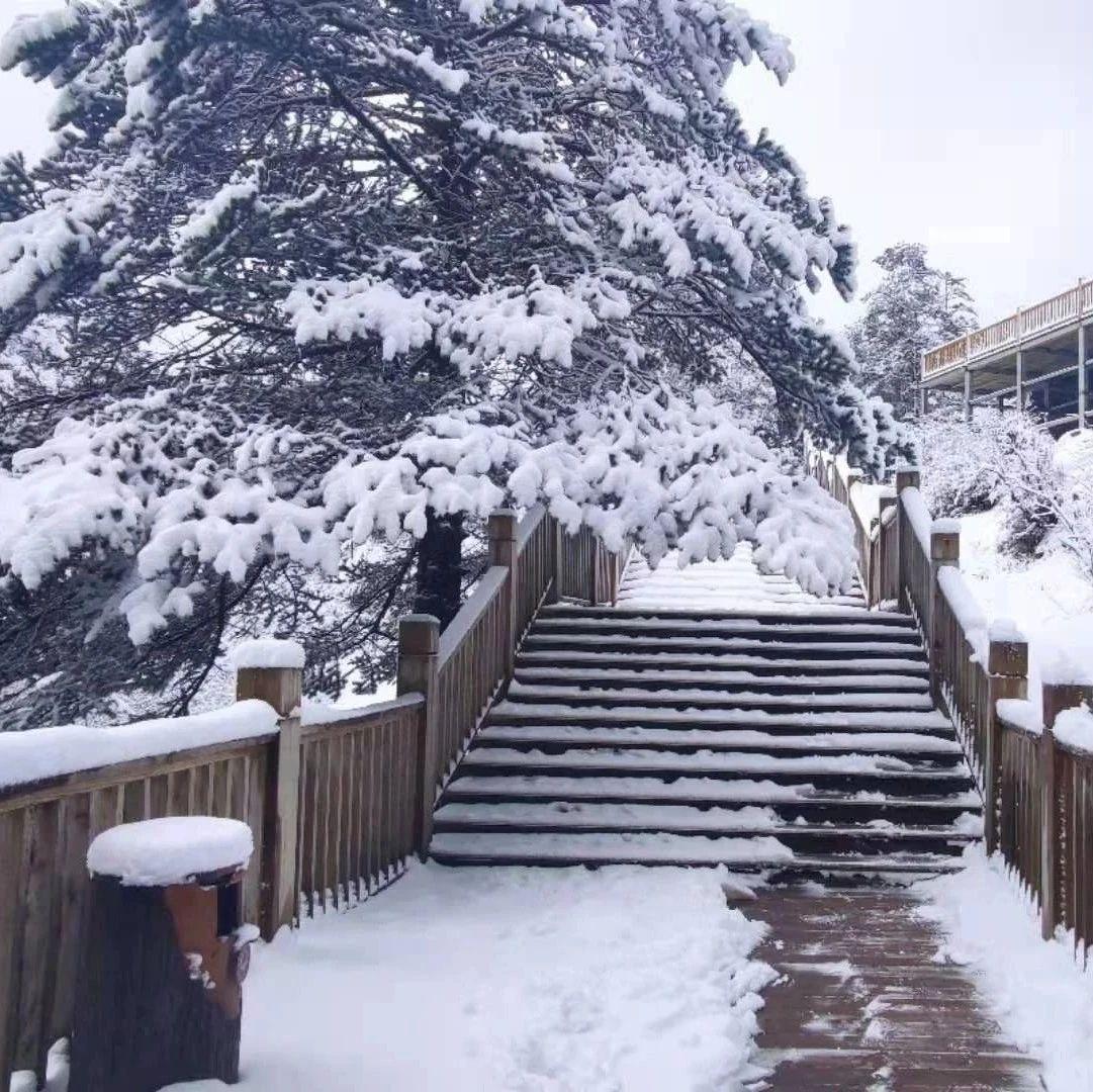积雪20厘米!西岭雪山又可以堆雪人了