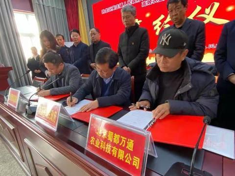 卧龙区英庄镇与北京、南阳农业公司签约 发展蔬菜2万亩 主供北京