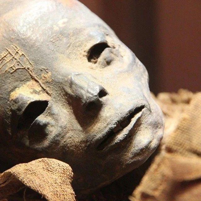 欧洲保存最完整之一的木乃伊旁惊现死胎,他是谁?
