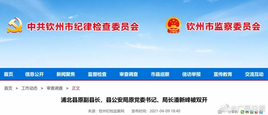 浦北县原副县长,县公安局原党委书记、局长潘新峰被双开丨还有这些领导干部被查