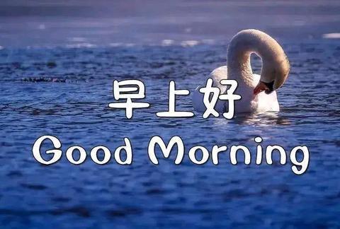 早晨问安:一声轻轻的问候,一句平淡的祝福,早晨好