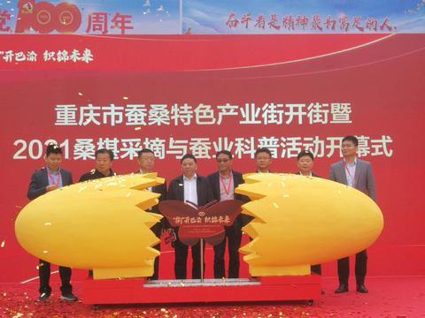 重庆市第一条以蚕桑文化为主题的产业街亮相北碚