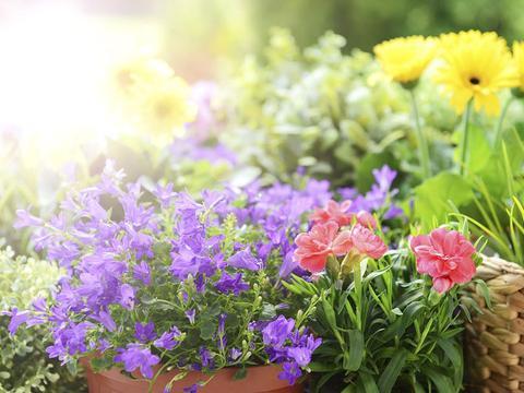 4月份,紫气东来,吉星高照,财运大翻身,美梦全实现的3个星座