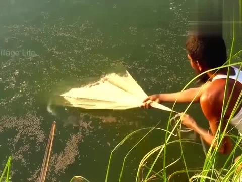 芭蕉树边的池塘,农村大叔偷偷撒一网,看看捕获了多少鱼?