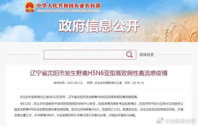 农业农村部新闻办公室4月12日发布,沈阳发生野禽H5N6亚型高致病性禽流感疫情