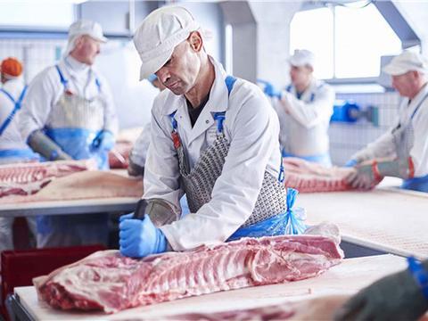 疫情当前 英国政府向被暂停输华的猪肉工厂拨付补助