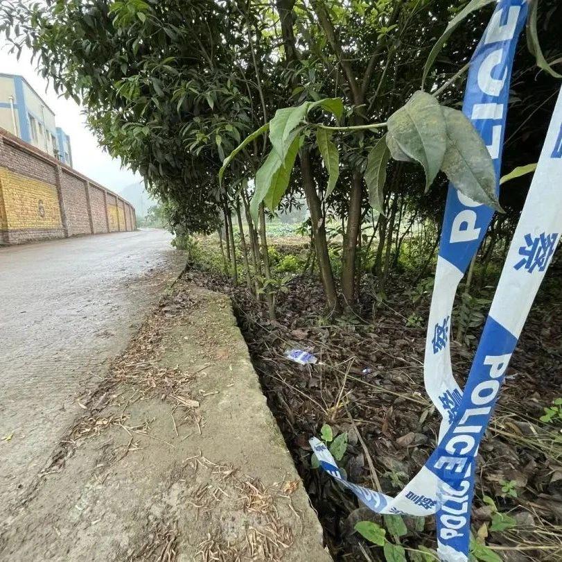 27岁男教师车内身亡,因挪用公款欠网贷自杀?学校回应