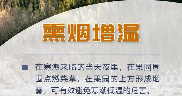 海报丨做好果树花期晚霜冻害预防及补救工作!山西省果业总站发出提醒