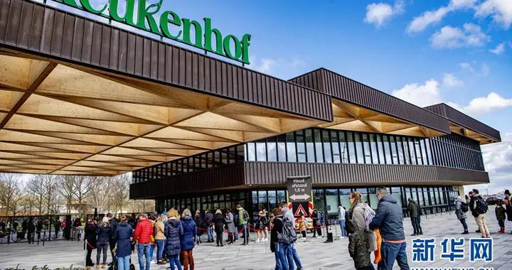 荷兰库肯霍夫公园对游客开放
