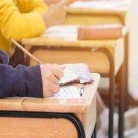 关注丨教育部:中考前后如出现疫情中高风险地区 可适当调整中考时间