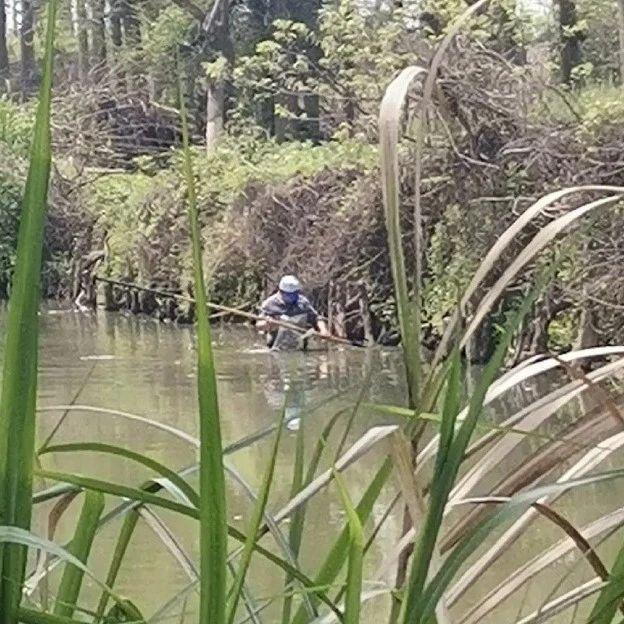 """嘉兴这条河里遍布上百个""""地笼""""和""""迷魂阵""""!鱼都被抓完了…"""