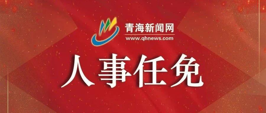 海东市、黄南州人民政府最新人事任免通知