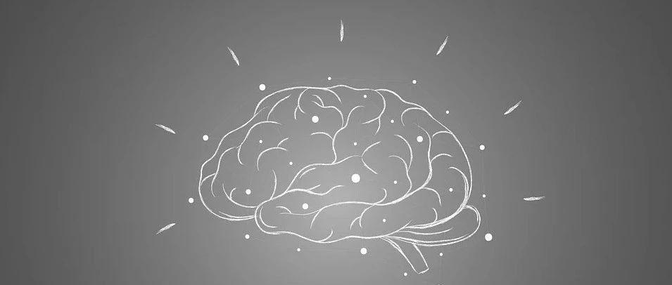 """西北农大最新研究:保持大脑""""青春""""、延缓认知下降,或可通过限制这类氨基酸实现"""
