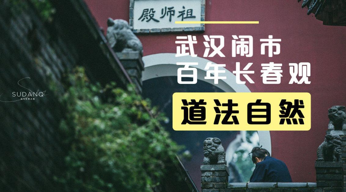 """武汉长春观,雨天寻""""道"""",城市万象草木间……"""