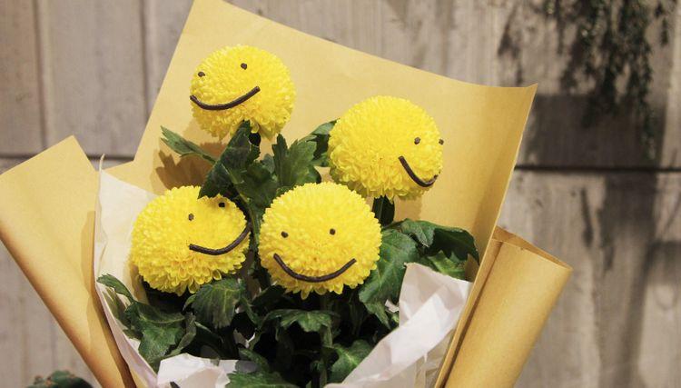 """花型如乒乓球的""""乒乓菊"""",花小量多、清新淡雅,真适合盆栽观赏"""