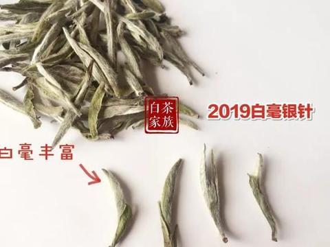 春白茶小知识6:白毫银针、白牡丹、寿眉,哪款茶值得收藏?
