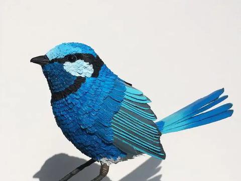 印度美女用纸雕刻鸟类,活灵活现的样子,仿佛要从她手中飞走