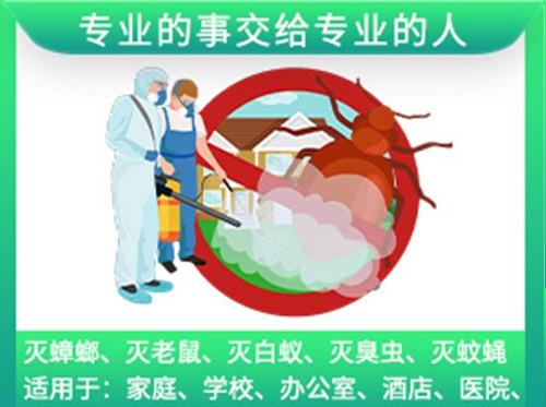 福卫士 全力治理虫害,献上健康明天