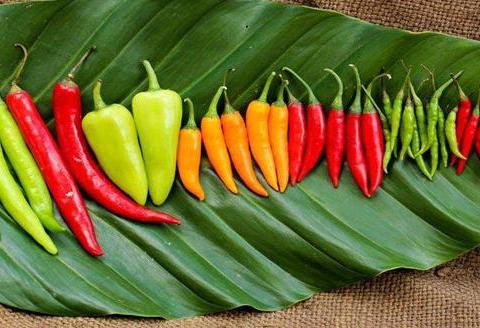 虎皮青椒这样做太好吃了,5分钟搞定,吃一次就深深爱上了。