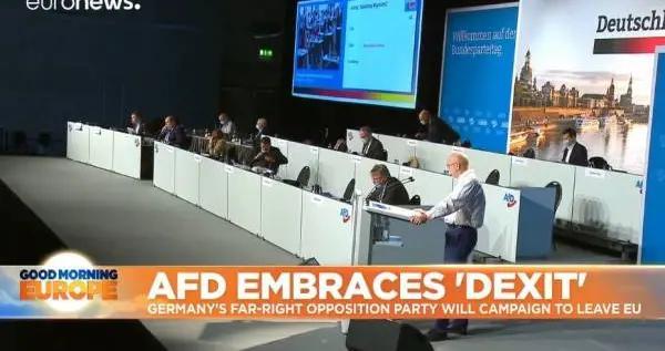 德国选择党决议执行坚定的反欧盟纲领,呼吁德国脱欧