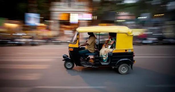 印度警方破获离奇案件,猴子抢劫律师,其背后原来有这样的人操纵