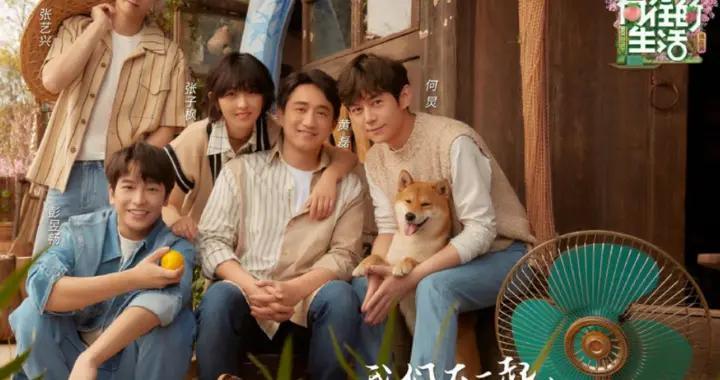 《向往5》三人春日海报,张子枫成为宠儿,谁注意到彭昱畅的手?