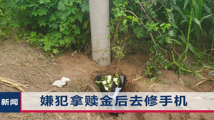 河北12岁女孩被绑架致死,父亲:公诉机关提出建议死刑,很欣慰