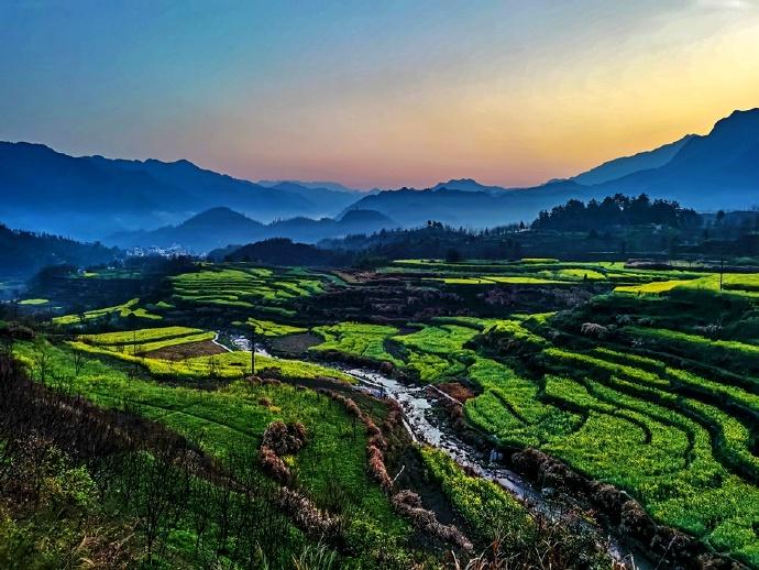 晨曦里的梅干岭梯田,梦幻一般的美景,怎能不令人流连忘返