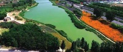 打造银川最大人工沙滩,城南两处大型公园在建中!