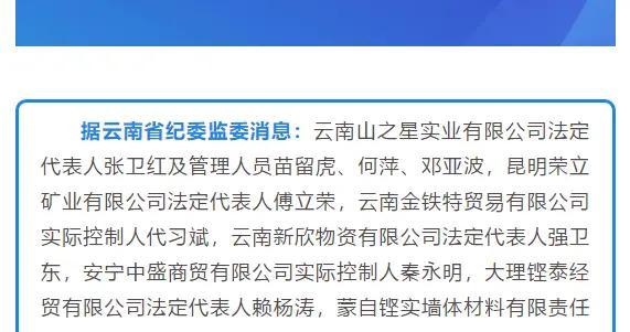 云南山之星公司法人代表张卫红等12人被留置