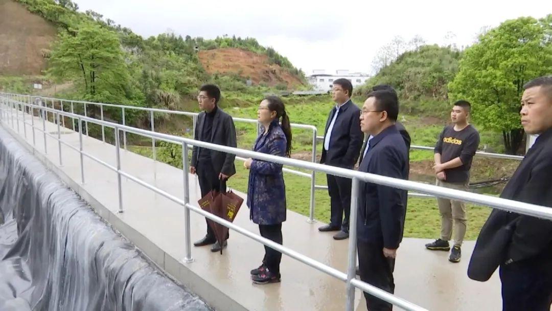 婺源县委书记吴曙督导矿山和机制砂场生态环境问题整改工作