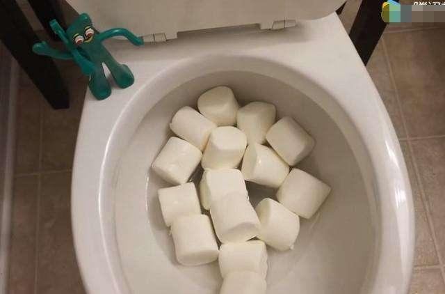 男子为测试新马桶的冲水功能,将棉花糖放进马桶内,结果很意外