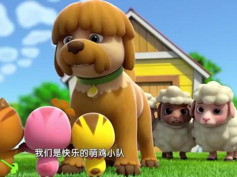 萌鸡小队:萌鸡们受到误会,幸好有牧羊犬帮助,不然就麻烦了!