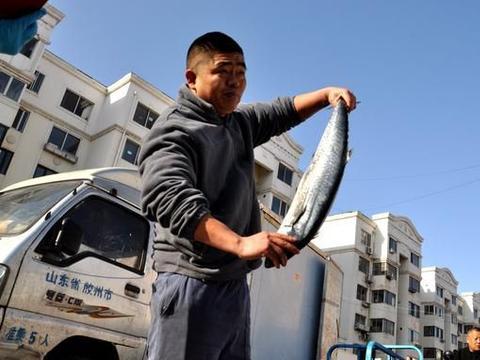 春天的味道,青岛早市海鲜最便宜5块一斤,现场加工拿走即吃