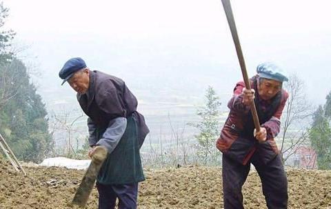 农村为何有些老人一个月只有100多元钱就能生存?