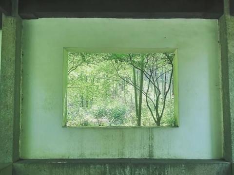 """西湖附近,有着美丽的""""人间仙境"""",风景宜人却很安静"""