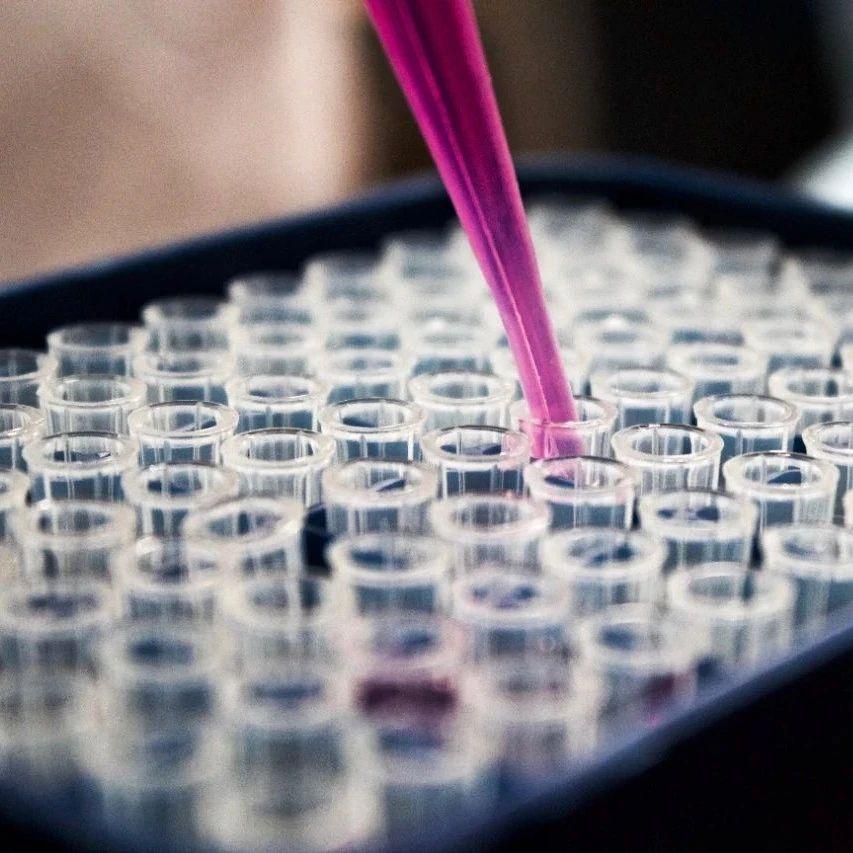 【企业|脉搏】甘莱宣布THR-β激动剂ASC41美国临床研究完成首个队列给药