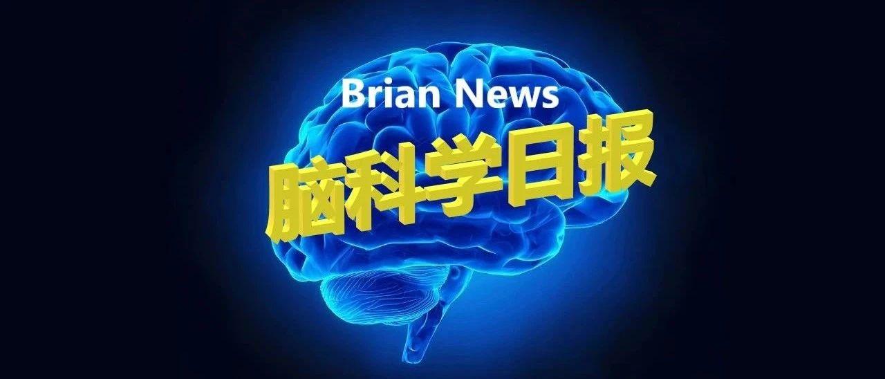 4.16 脑科学日报| 人类与生俱来的尖叫声传达了至少六种情绪,起着不可忽视的作用