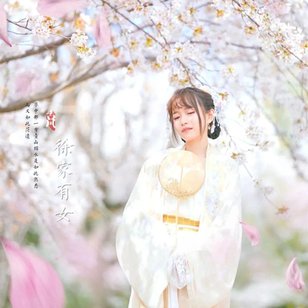 我拍了一组樱花照,来!给你也安排!
