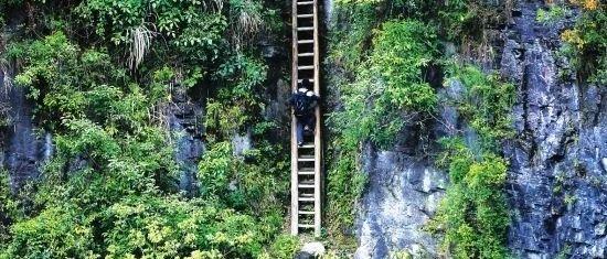 爬悬崖天梯上学的湖南兄妹,因一张照片感动中国,如今他们过得怎样了?