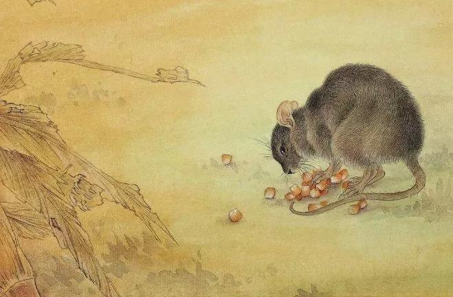 大金鼠:哪月出生的属鼠人福禄双全,大器晚成,看看有你吗?